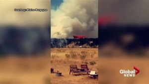 Cranbrook-area wildfire reaches 25 hectares, forces flight cancellations