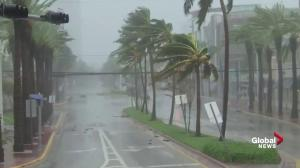 Hurricane Irma: Intense winds blow bend street signs, trees in Miami