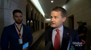 Veterans Affairs Minister Seamus O'Regan says he has not yet read report commissioned on PTSD service dogs