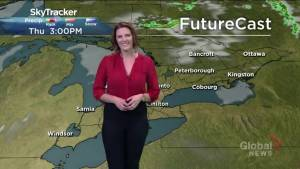 Sunshine and heat expected for the long weekend, thunderstorm risk Friday