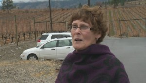 Thieves target wineries in Okanagan Falls