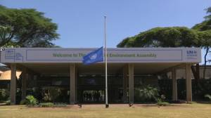 U.N. and other agencies fly flags at half-mast for Ethiopian Airlines victims