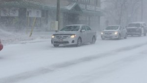Nor'easter brings snow and wind to New Brunswick