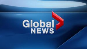 Global News at 5 Edmonton: Feb. 8