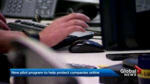Federal government launches new program to protect organizations from cyber attacks