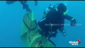 Indonesian divers continue desperate search for Lion Air flight recorder