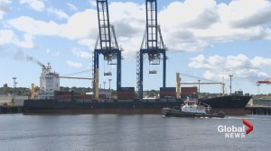 World's third largest container makes first Saint John call