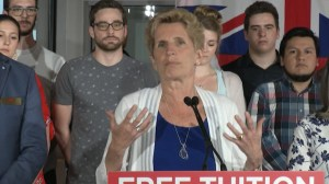 Wynne's announcement: reactions from Kingston and The Islands candidates