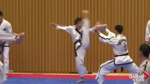 Joint North, South Korean Taekwondo team put on dazzling performance