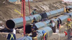 President Trump green lights Keystone XL and Dakota Access pipelines