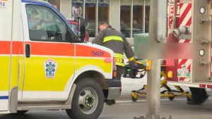 8-year-old boy dies after being hit by vehicle on St. Anne's Road
