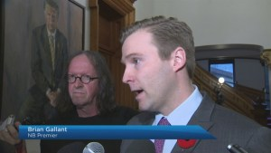N.B. premier issues ultimatum to caucus member over perceived conflict of interest