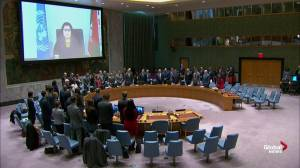 U.N. Security Council holds moment of silence for Ethiopian Airlines