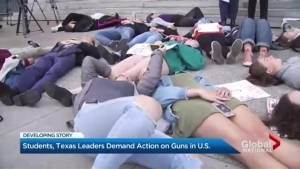Texas lawmakers call for stricter gun control after Santa Fe school shooting