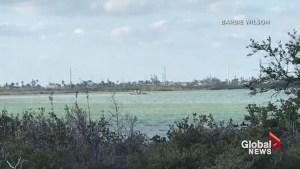 U.S. Navy jet crashes off Florida coast