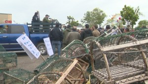 Hundreds of lobster fishermen protest changes to industry