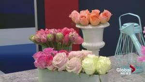 Do it yourself floral arrangements (05:07)