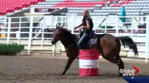 Sydney Daines makes a name for herself in and out of the CFR ring