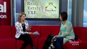 Real Estate YXE: dealing with pets while selling homes