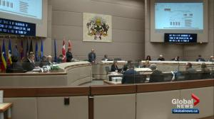 Tax hikes and cuts highlight Calgary's proposed 4-year budget