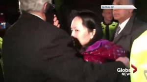 Meng Wanzhou, Huawei CFO, released from custody