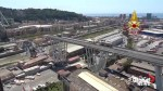 Aerial footage shows scene of bridge collapse in Italy