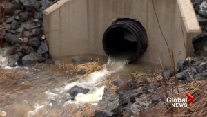 N.S. man takes Halifax Water to court