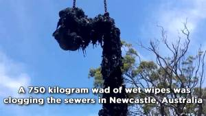 Utility workers pull 750-kg 'fatberg' from Australian sewer