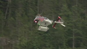 Shannon Falls search continues