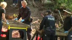 More human remains found in McArthur murder case