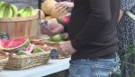 Pointe-Saint-Charles market offers healthy, affordable produce
