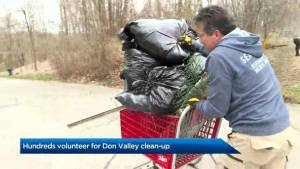 Hundreds pitch-in to help clean-up Toronto's Don Valley