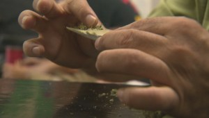 New Brunswick proposes cannabis legislation to protect youth