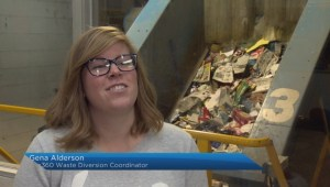 Plastic bag ban on the horizon for residents of Moncton