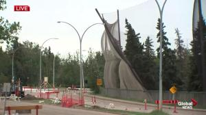 Fierce wind downs trees, causes damage in Edmonton