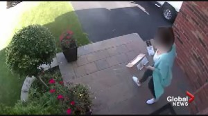 Kirkland residents search for alleged thief