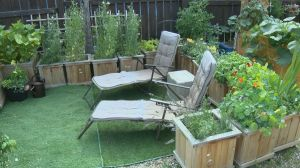 Urban agriculture tour highlights some of Saskatoon's creative gardeners