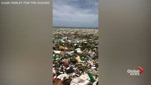 Tons of plastic, debris found clustered together in Caribbean sea off coast of Santo Domingo