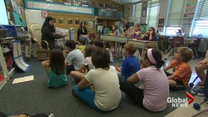 Education Minister says elementary teachers haven't identified why they are planning to strike