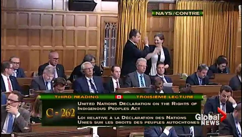 'Immature': Tory MPs slammed for high-five after vote against Indigenous rights bill