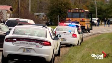 3 siblings killed trying to board school bus after truck