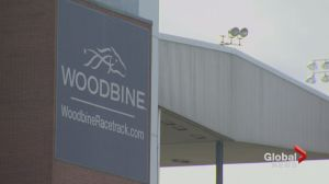 Woodbine horse rider dead after accident at track