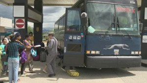 Provincial minister discusses Greyhound decision