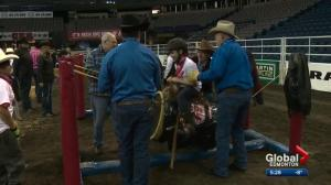 CFR 44: Rodeo Magic, where the kids are the stars