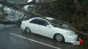 Tropical Cyclone Marcus causes major damage, knocks out power to thousands in Australia