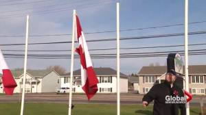 Residents and vets upset after site honouring veterans vandalised in Riverview, N.B. (02:07)
