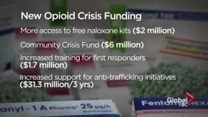 B.C. government announces plans to fight the overdose crisis