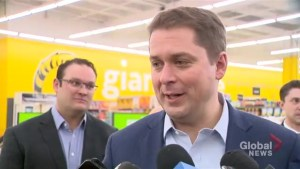 Scheer says Conservatives will reveal their climate change plan with ample time before election