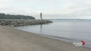 Unsafe E.coli levels close large number of Metro Vancouver beaches