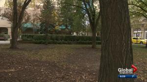 Tower could be built on park near Hotel Macdonald